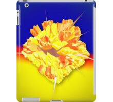 like ice in the sunshine iPad Case/Skin
