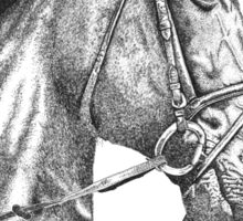 Fine line, hand drawn, Horse in Bridle Sticker