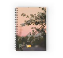 Spring Nights Spiral Notebook