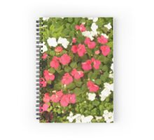 Red, White and Green Spiral Notebook