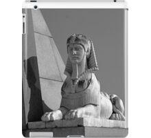 Sentinel iPad Case/Skin