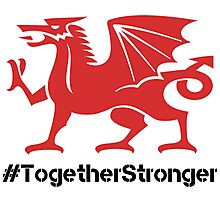 #WALBEL WALES EURO 2016 #TOGETHERSTRONGER Photographic Print
