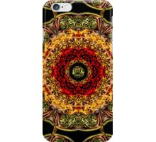 KALEIDOSCOPE SWIRL DECORATIVE PILLOW iPhone Case/Skin