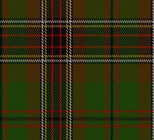 00076 Murphy - Tara District Tartan  by Detnecs2013