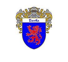 Davila Coat of Arms/Family Crest Photographic Print