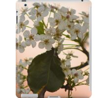 Blossoming Pear iPad Case/Skin