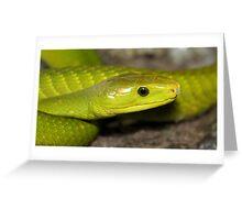 Green Mamba Greeting Card