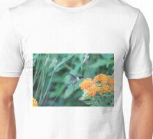 Hummingbird feeding on orange flowers Unisex T-Shirt