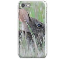 Eastern cottontail baby bunny iPhone Case/Skin