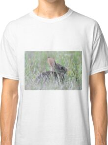 Eastern cottontail baby bunny Classic T-Shirt