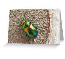 Dogbane Beetle- beautiful creature! Greeting Card