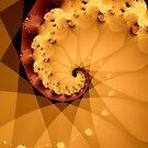 Spiral in Brown by Dana Roper