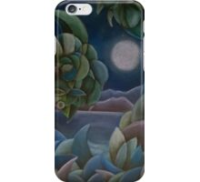 Carribean Night iPhone Case/Skin