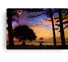 Australian Wetlands Canvas Print