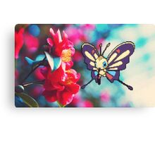 Beautifly Canvas Print