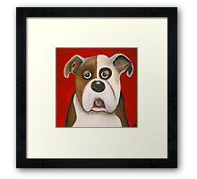 Winston the dog Framed Print