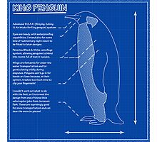 King Penguin Blueprint - Annotated Photographic Print