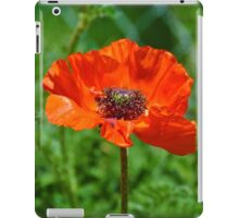 Orange Poppy Bloom, greenery iPad Case/Skin