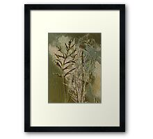 Nature's random Framed Print