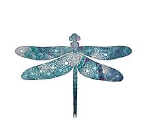 Dragonfly Print Photographic Print