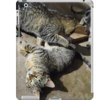 Convoluted Kitties iPad Case/Skin