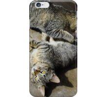 Convoluted Kitties iPhone Case/Skin
