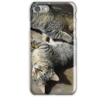Convoluted Kitties iPhone Case/Skin