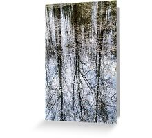 reflection of tree trunks in water  Greeting Card