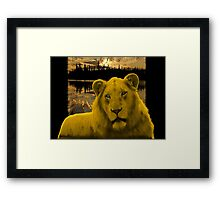 Yellow lion Justin Beck Picture 2015090 Framed Print