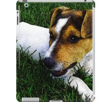 Jack Russell Justin Beck Picture 2015097 iPad Case/Skin