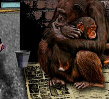 Homeless-Chimps-Justin-Beck-Picture-2015083 Sticker
