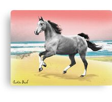 Beach Horse Justin Beck Picture 2015081 Canvas Print