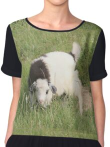 Goat a Little Worried Chiffon Top