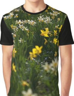 daffodils in the sun Graphic T-Shirt