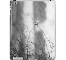 Aberdeenshire iPad Case/Skin