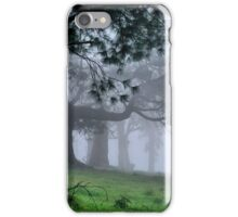 Foggy Wynstay - Mt Wilson NSW Australia iPhone Case/Skin