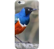 Sitting on a tree iPhone Case/Skin