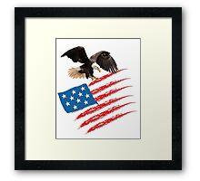 America US Flag Framed Print
