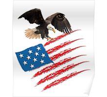 America US Flag Poster