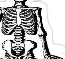 Skelett meditiert Sticker