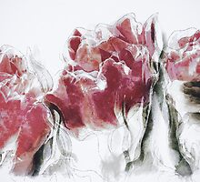 French Country Roses by Shanina Conway
