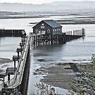 garibaldi public pier by Bruce  Dickson