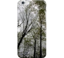 Towering Trees iPhone Case/Skin