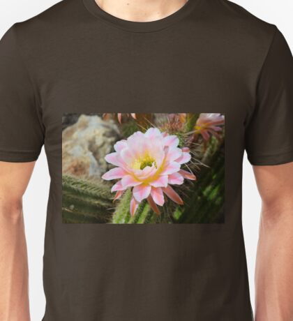 Pale Pink Torch Cactus Flower Unisex T-Shirt
