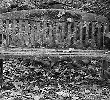 Bench by rkteck