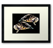 What the shell? Part 2  Framed Print
