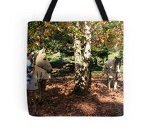 Hey Mr Ed!....Come and Have Your Photo Taken By The Nice Man With The Camera Tote Bag