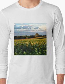 Summer sunflower field Long Sleeve T-Shirt