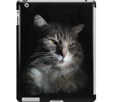 Portrait of tabby cat with black background iPad Case/Skin
