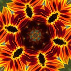 Sunflower kaleidoscope by Celeste Mookherjee